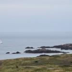 DSC_0590, Alderney