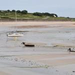 DSC_0604, Alderney