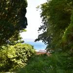 DSC_0662, Guernsey