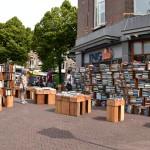 SEM_0233, Haag
