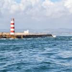 DSC_0299, Faro
