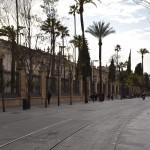 DSC_0229, Sevilla