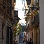 DSC_0634, Palma2