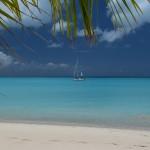 DSC_0055, Barbuda