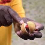 DSC_0251, Grenada