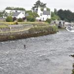 DSC_0555, Galway